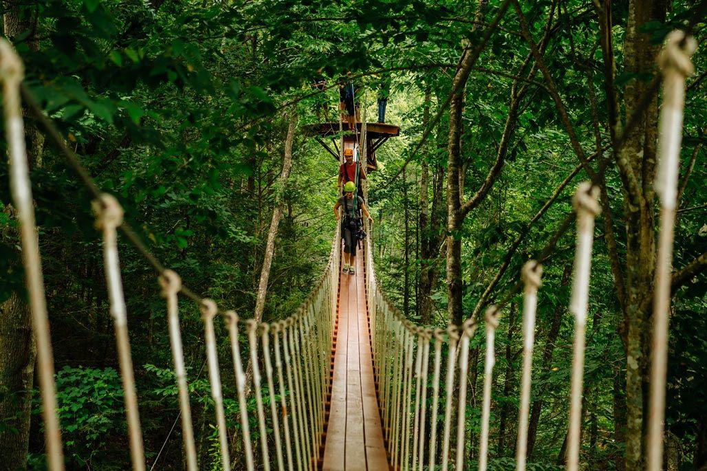 Treetop Canopy Tours Gatlinburg