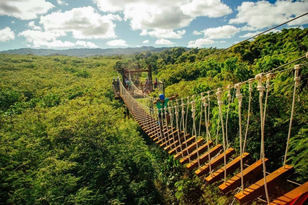 Zipline In Oahu Hawaii Climb Works Keana Farms