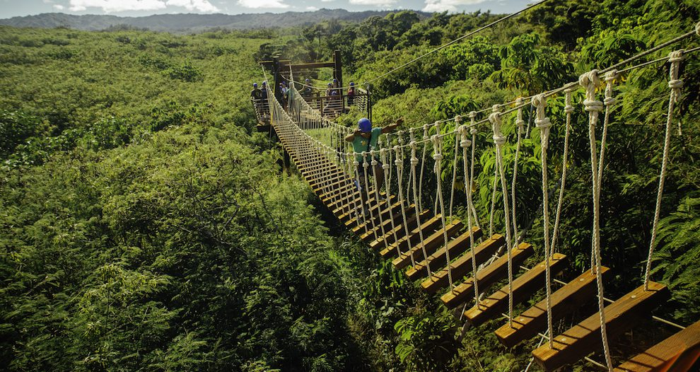 5 Things That Make Our Oahu Ziplines Unique
