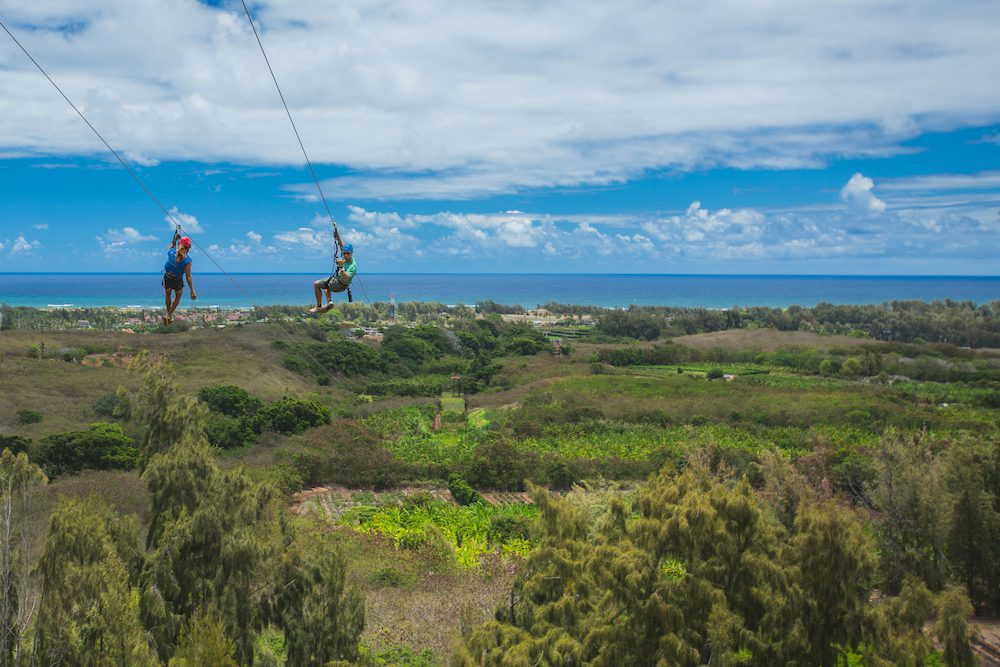 5 Reasons Our Oahu Zipline Tour is the Ultimate Team Building Activity