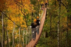 sky bridge in the fall