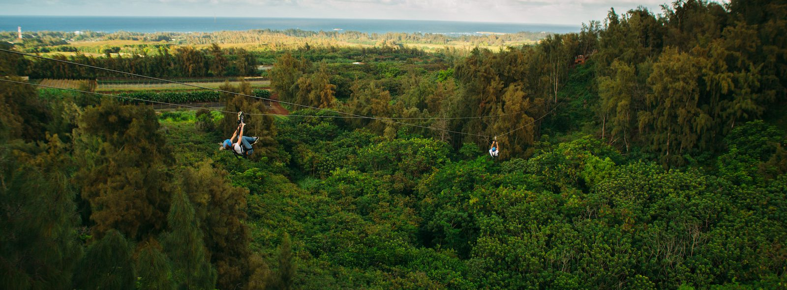 4 Things You'll Gain from Our Oahu Zipline Tour