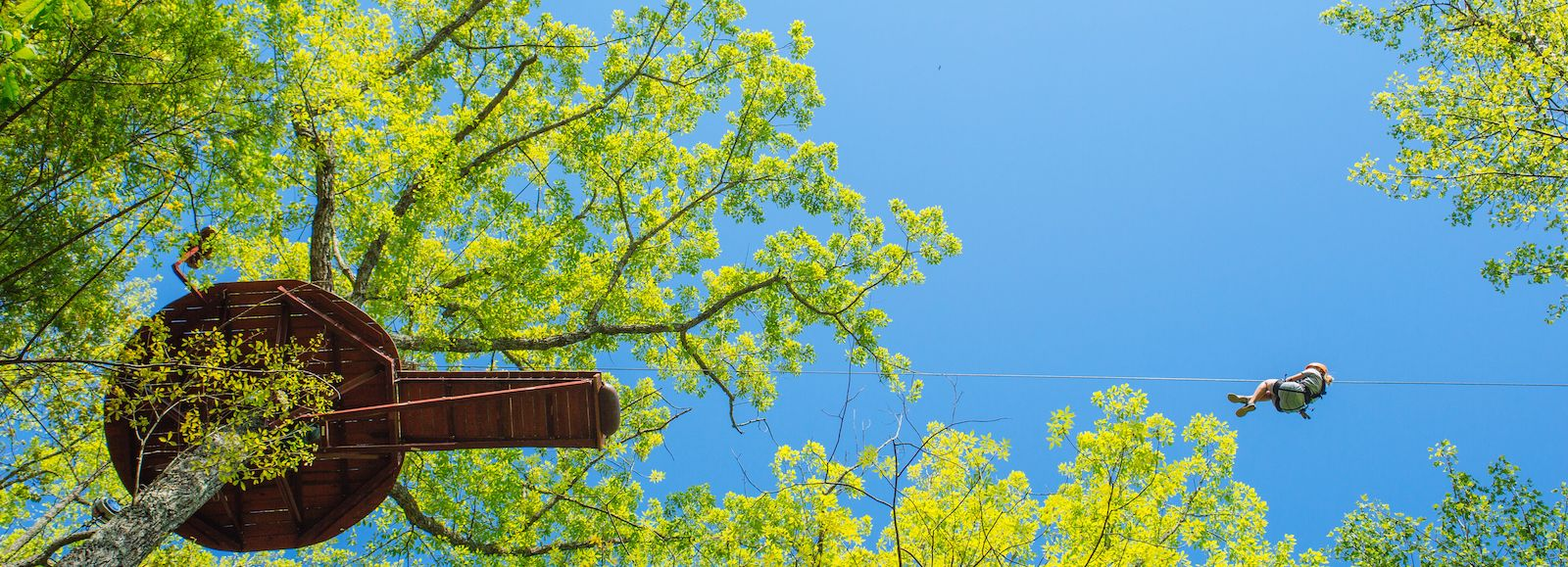 All About One of The Best Ziplines in Gatlinburg: Treetop Zipline Tour
